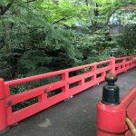 椿山荘撮影